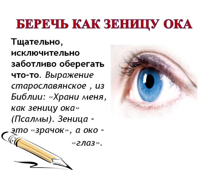 зеница ока архаизмы