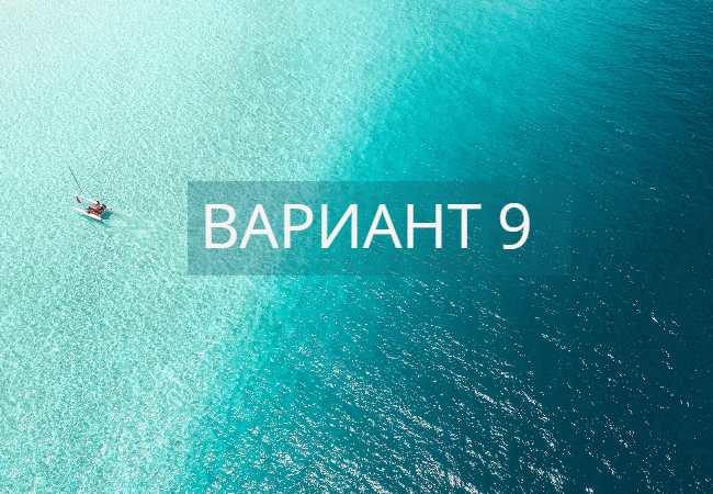 Вариант 9 ЕГЭ по русскому языку