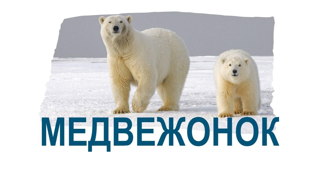 Медвежонок пишется через букву о
