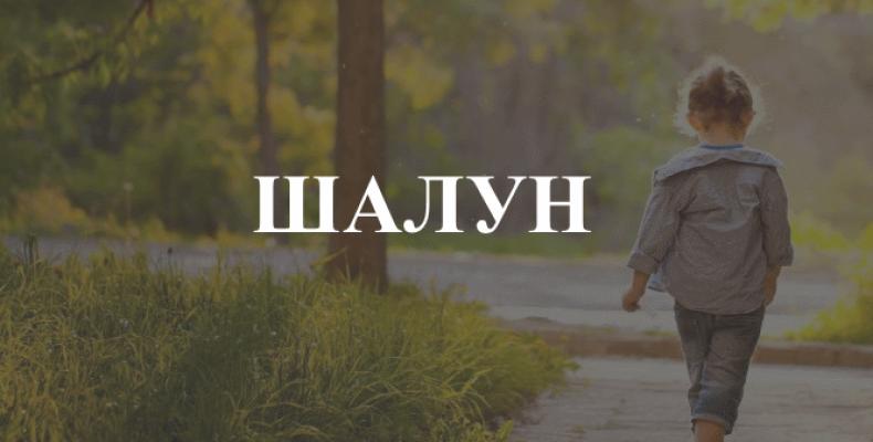 Шалун — как подобрать проверочное слово
